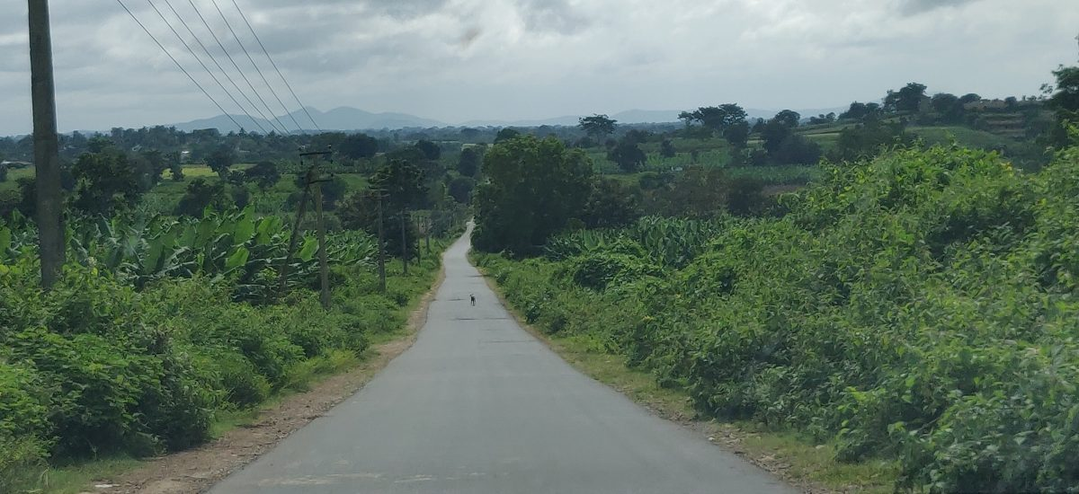 best route to reach Wayanad from Bangalore