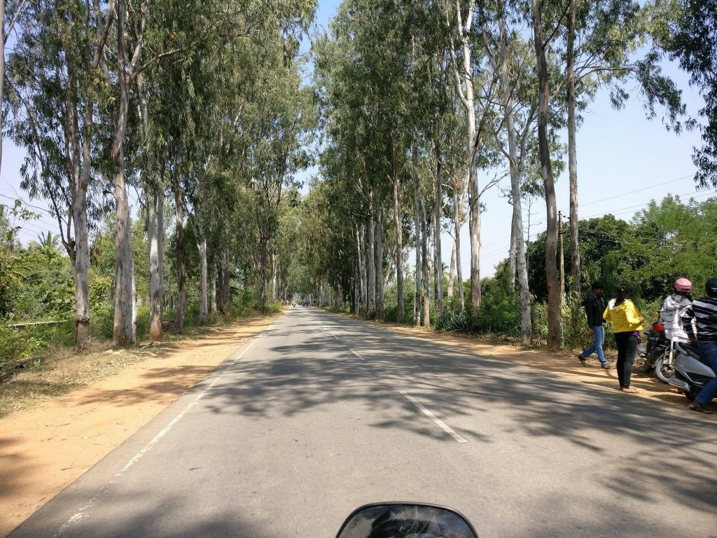Road trip from bangalore to Nandi Hills