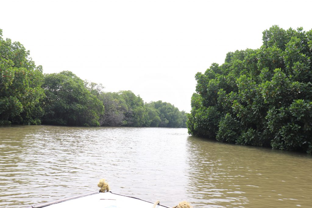 Sightseeing places in Chidambaram - nearby visiting places in Kumbakonam