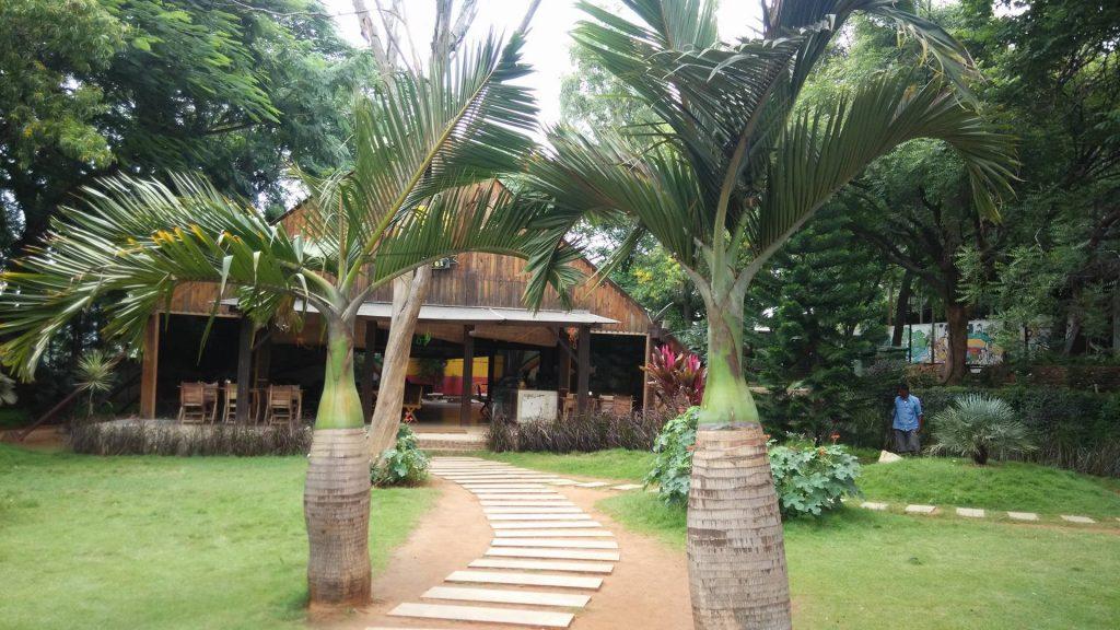 Rasta cafe bangalore images